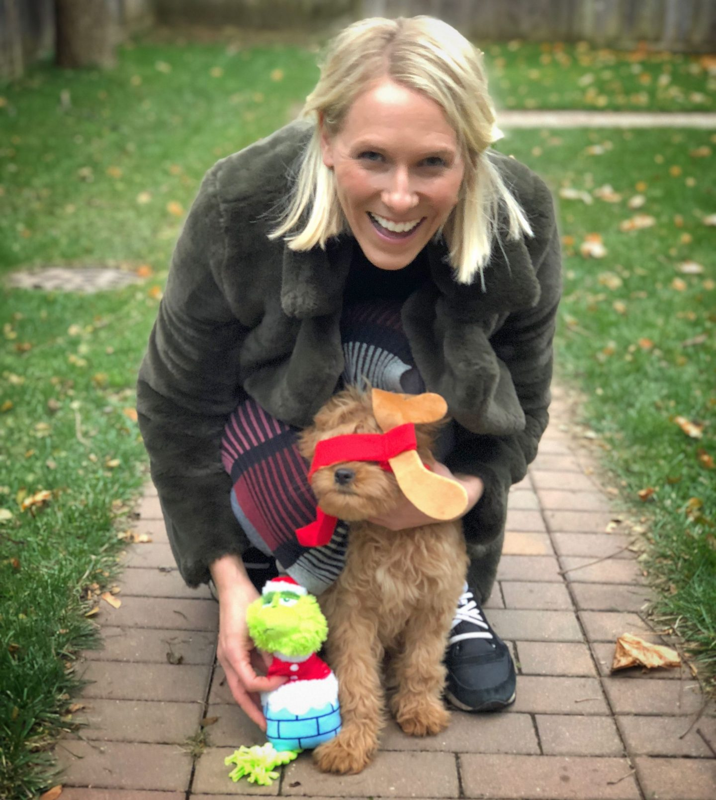 The Grinch BarkBox