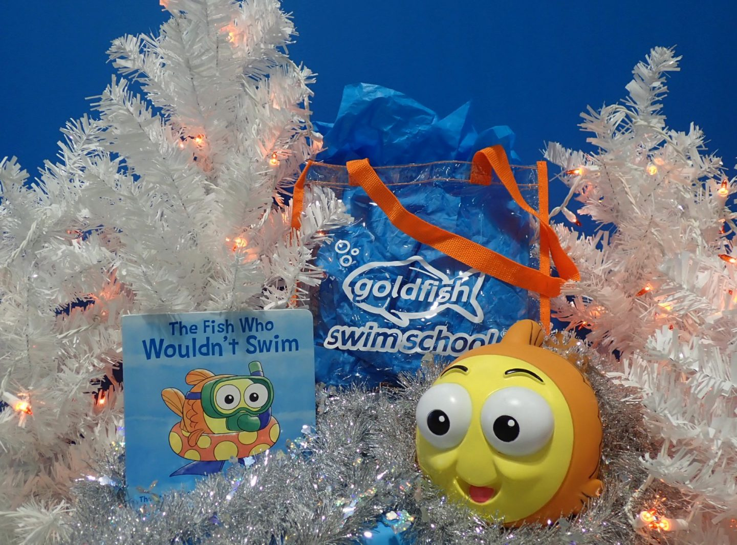 Goldfish Swim School holiday retail package