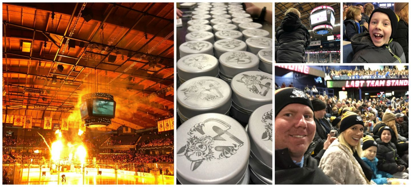Chicago Wolves Games are family-friendly