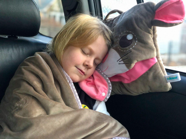 Pillowie Road Trip