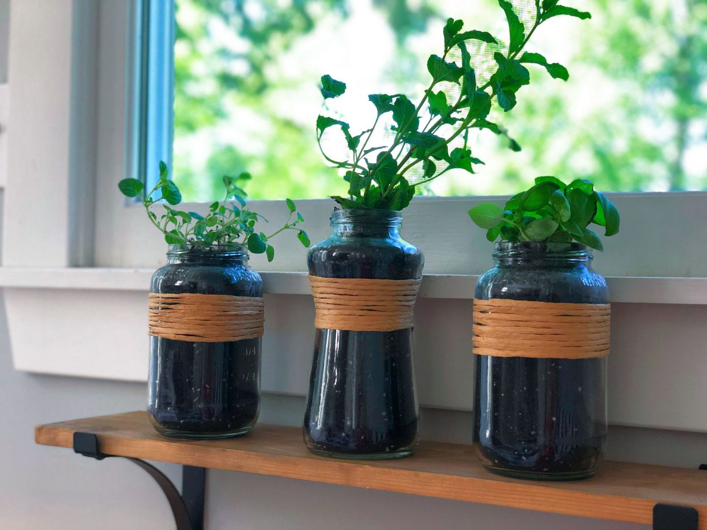 Last-Minute Father's Day Gifts- Windowsill Herb Garden